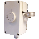 Fixed model envionment Thermostat